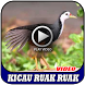 Kicau Burung Ruak Ruak by MAKITAMEGA_APPS