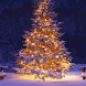 3D Christmas Live Wallpaper HD by Fusion Wallpaper