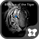 Theme -Blue Eye of the Tiger- by +HOME by Ateam