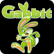 Gabbit: Youth by Group Publishing, Inc.