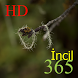 365 İncil HD by KenMac Holdings Limited