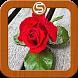 Update Status Cinta Keren by Sutini Dev Lab