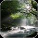Flowing Stream Live Wallpaper by Wallpaper Joy