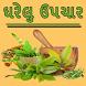 Gharelu Upchar in Gujarati by Urvashi Patel801