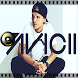 Avicii Wake Me Up by Vodkill Entertainment