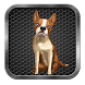 My Talking Dog by Best Adventure Games 2015