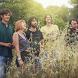 GANG OF PEAFOWL by SoundBirth