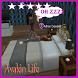 Best Tips Avakin Life by Arsha_ka tech