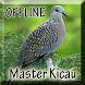 Suara Burung Perkutut Juara by Smanxar Studio