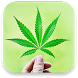 3D Marijuana Live Wallpaper by Tyron