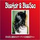 安全髪染めカラーグレス ブルーヘアー by Aikansha.Inc