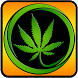 Pot Dots Free by Appsolute Madness, Inc.