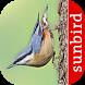 Bird Id - British Birds by Sunbird Images