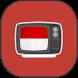 tv indonesia hd by RizOne Dev