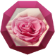 Rose of Romantic Love Theme by Best Themes Workshop