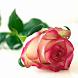 Liefde SMS / Gedichtjes by BZentrale2