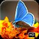 Beautiful Butterfly Wallpapers by SSWeetie DEV