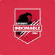 Box Indomable by MATCHPOINT