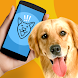 Dog Phrasebook Translator Joke by Fresh & Mint