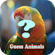 Animal Quiz Game by Hataru Inc