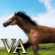VA Horse Wallpaper