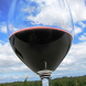 New York Winery Finder: Tablet by Lance Etcitty
