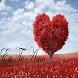 Eu Te Amo by misanapps