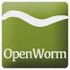 WormWorx++