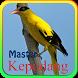 Master Kepodang Juara by dwelapps