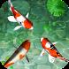 Water Koi Fish Pool LWP by TFish Tech, Inc.