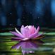 Magical Lotus Live Wallpaper by Daksh Apps