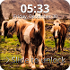 Pony Sensitive Screen Lock