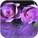 RainDrop Rose Purple Theme by Leopard Print Themes
