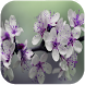 Spring Flowers Live Wallpaper by Mobtari