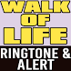 Walk of Life Ringtone & Alert by Hit Songs Ringtones