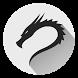 Learn Kali Linux by Blackhole Inc.