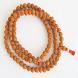 Rudraksha Beads Store by VisionWeb