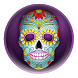 Day Of The Dead Skull Editor by Free Photo Montage And Photo Effects