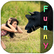 Top HD Funny Videos by CreativeApps Inc.