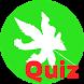 Quiz Melendi