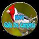 novo Canto Galo De Campina by ayyasy