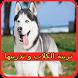 تربية الكلاب و تدريبها by ABDELGHAFOUR MARJANE