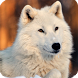 White Wolf Live Wallpaper HD by WallpapersLove