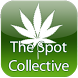 The Spot Collective by Kylie Morgan