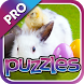 Easter Puzzles Pro by Mokool Inc
