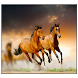 Horse Live Wallpaper by SoftFree2015