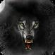 Werewolf Pack 4 Live Wallpaper by WallpapersLove