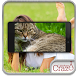 Cat Face Scanner Simulator by Crazy Light Apps