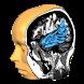 Brain Tutor 3D by Rainer Goebel, Brain Innovation