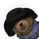 Paddington Bear's Adventures by Daredevil Development Ltd.